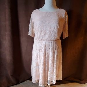 Wrapper lace dress size 2x new with tags